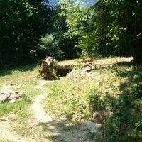 Photo prise au Parc zoologique et botanique de Mulhouse par Jansku R. le7/19/2018