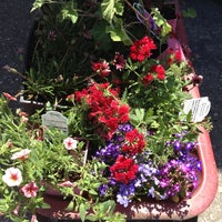 Photo Taken At Payless Nursery Amp Rockery By Diane C On 6