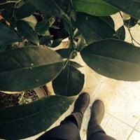รูปภาพถ่ายที่ Studyo โดย Bahar D. เมื่อ 10/24/2013