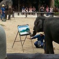 Foto scattata a Maesa Elephant Camp da Eau N. il 11/19/2012