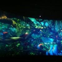 Снимок сделан в 7D-кинотеатр пользователем Маха 11/24/2012