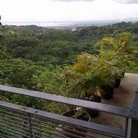 Cattleya Resort 7 Tips