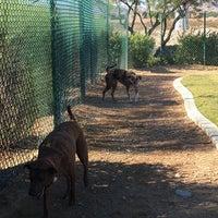 10/22/2016 tarihinde Steveziyaretçi tarafından Dog Park - Southern Highlands'de çekilen fotoğraf