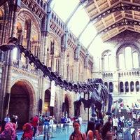 Foto scattata a Museo di storia naturale da Simone Santo il 7/6/2013