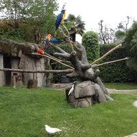 Foto scattata a Parco Faunistico Le Cornelle da Salvatore il 4/28/2013