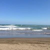 12/23/2012에 Moisés A.님이 Playa Chachalacas에서 찍은 사진