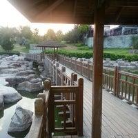 7/7/2013 tarihinde Hüseyin K.ziyaretçi tarafından Kır Kahvesi'de çekilen fotoğraf