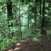 Снимок сделан в Forest Park - Wildwood Trail пользователем Jana G. 6/27/2013