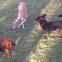 9/17/2012 tarihinde Portia C.ziyaretçi tarafından Dog Park - Southern Highlands'de çekilen fotoğraf