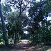 Foto scattata a Jardins de Can Sentmenat da Santi O. il 4/13/2014