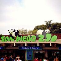 3/30/2013 tarihinde James N.ziyaretçi tarafından San Diego Hayvanat Bahçesi'de çekilen fotoğraf
