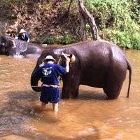 Foto scattata a Maesa Elephant Camp da ปุสดา โ. il 4/13/2013