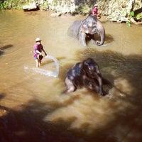 Foto scattata a Maesa Elephant Camp da Galazpop .. il 1/8/2013
