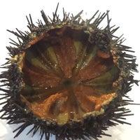 Ristorante Corallium Sarpi 3 Tips