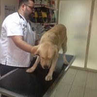 รูปภาพถ่ายที่ VTM - Hayvan Hastanesi โดย Sezen Y. เมื่อ 11/5/2012