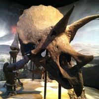 Photo prise au Science Museum of Minnesota par Jennifer W. le11/18/2012
