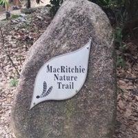 Foto scattata a MacRitchie Nature Trail da Lee Lee il 3/14/2015