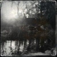 1/31/2013にGeoff Y.がDescanso Gardensで撮った写真