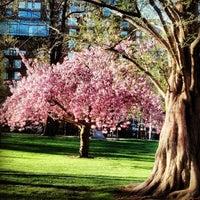 Foto tomada en Jardín Público de Boston por Alice P. el 5/3/2013