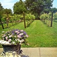 6/10/2013にlanamaniacがCrossing Vineyards and Wineryで撮った写真