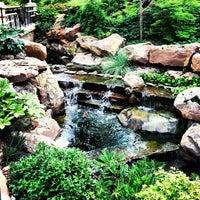 7/16/2013 tarihinde Joaquin G.ziyaretçi tarafından Dallas Arboretum and Botanical Garden'de çekilen fotoğraf