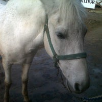 11/4/2012 tarihinde Melis U.ziyaretçi tarafından AtlıTur At Çiftligi'de çekilen fotoğraf