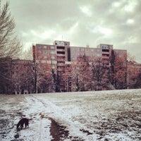 Снимок сделан в Görlitzer Park пользователем Lara Y. S. 12/1/2012