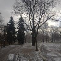 1/31/2013にReticulating S.がTrinity Bellwoods Parkで撮った写真