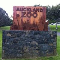 11/16/2012에 Sandrinha A.님이 Auckland Zoo에서 찍은 사진