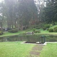 Kebun Raya Taman Wisata Cibodas Jardin