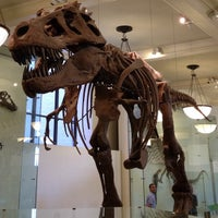 Foto scattata a American Museum of Natural History da Gavin A. il 6/4/2013