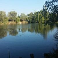 7/13/2014 tarihinde Tutku D.ziyaretçi tarafından Arif Abi'nin Yeri'de çekilen fotoğraf