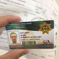 Modulo De Licencias Y Placas Ssp 29 Tips