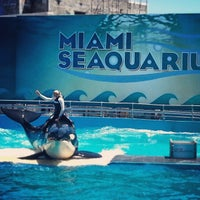 Photo prise au Miami Seaquarium par Stephania p. le4/6/2013