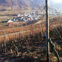 Das Foto wurde bei Winzergenossenschaft Mayschoß von Michael K. am 11/14/2011 aufgenommen