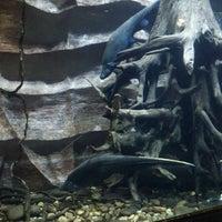 8/18/2012에 Andres Giovanny V.님이 Parque Explora에서 찍은 사진