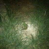 Foto scattata a Camping Lake Placid da Rosita il 8/2/2012