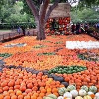 Foto diambil di Dallas Arboretum and Botanical Garden oleh Faith H. pada 10/27/2013