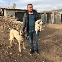Снимок сделан в Dinçer Bahçeleri пользователем Şevket Dinçer 2/10/2018