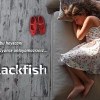 Снимок сделан в Blackfish Adana пользователем özkan ö. 7/7/2016