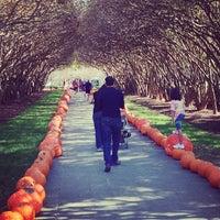Foto diambil di Dallas Arboretum and Botanical Garden oleh An N. pada 11/4/2012