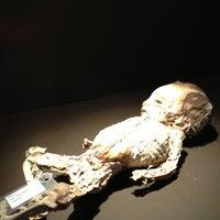 Foto tomada en Museo de las Momias de Guanajuato por Priscila P. el 6/9/2013