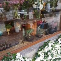 4/11/2019 tarihinde KAYAziyaretçi tarafından Violet Garden Çiçekliği'de çekilen fotoğraf
