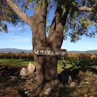 Foto tirada no(a) Larson Family Winery por Angela M. em 11/24/2012