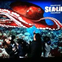Foto diambil di SEA LIFE Grapevine Aquarium oleh Samantha G. pada 12/17/2012