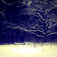 Снимок сделан в Невский лесопарк пользователем Lera L. 1/21/2013