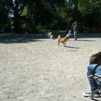 10/13/2012 tarihinde Nick B.ziyaretçi tarafından Tompkins Square Park Dog Run'de çekilen fotoğraf