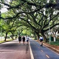 Photo prise au Parque Ibirapuera par Andrés R. le11/8/2013