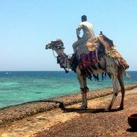 Das Foto wurde bei Red Sea von Alex Z. am 7/2/2014 aufgenommen