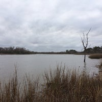 Armand Bayou Nature Center - Pasadena, TX